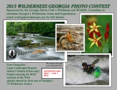 2013 Wilderness Photo Contest
