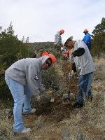Digging Public Service