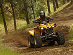 Protect the Wallowa-Whitman from ATV Abuse!
