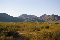 Sonoran Desert National Monument (Photo by Thom Hulen)