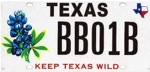 Bluebonnet License Plate