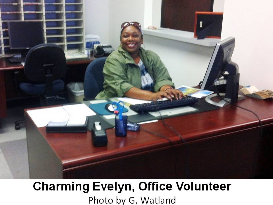 Chapter Office Volunteer