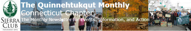 Connecticut Newsletter Banner