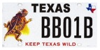 Texas License Plate Toad
