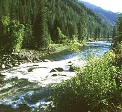 Lochsa-river-2.jpg