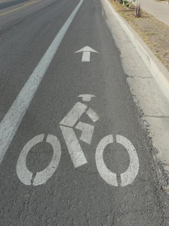 Phoenix bike path by Tiffany Sprague