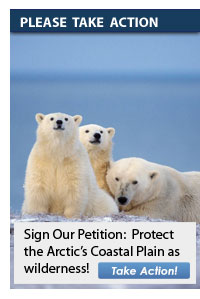 Protect the Arctic Refuge - Sign our petition today