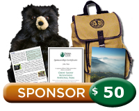 $50 Smoky Mountains Sponsorship