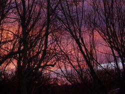 Sunrise Wagon Trail Park