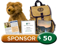 $50 Yellowstone Sponsorship