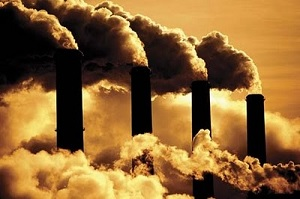 carbonrules.jpg