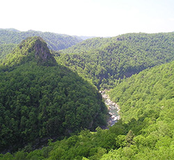 Take Action: Protect the Grand Canyon of the South from Mountaintop-Removal Coal Mining