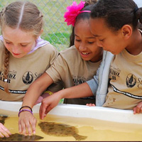 Tell Congress: Give K-12 public school students an environmental education