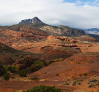 Resilient Habitats: Protecting Wild Lands