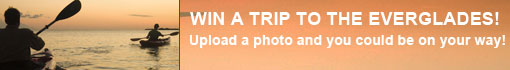 Upload a photo and win a trip