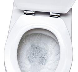 The Royal Flush in Toilet Technology?
