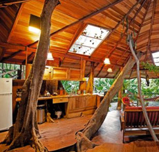 Four of the World's Most Magical Treehouse Hotels