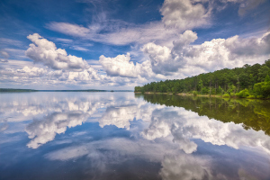 Jordan Lake image