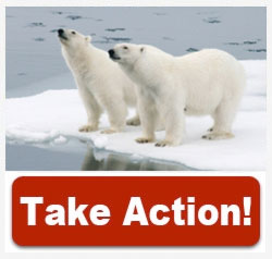 Tell President Obama to protect America's Arctic!