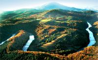 new river 2.jpg