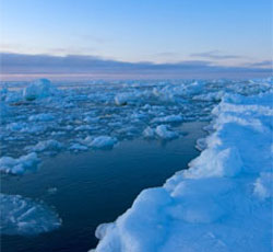Protect the Arctic From Oil Drilling