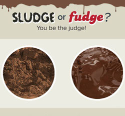 Sludge or Fudge?