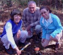 Identification of mushroom on local hike in October