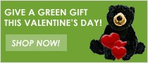 Green Gift