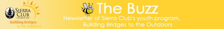 The Buzz: Newsletter of the Sierra Club's Youth Program